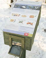 Free bird food distributors in parks in Polish city